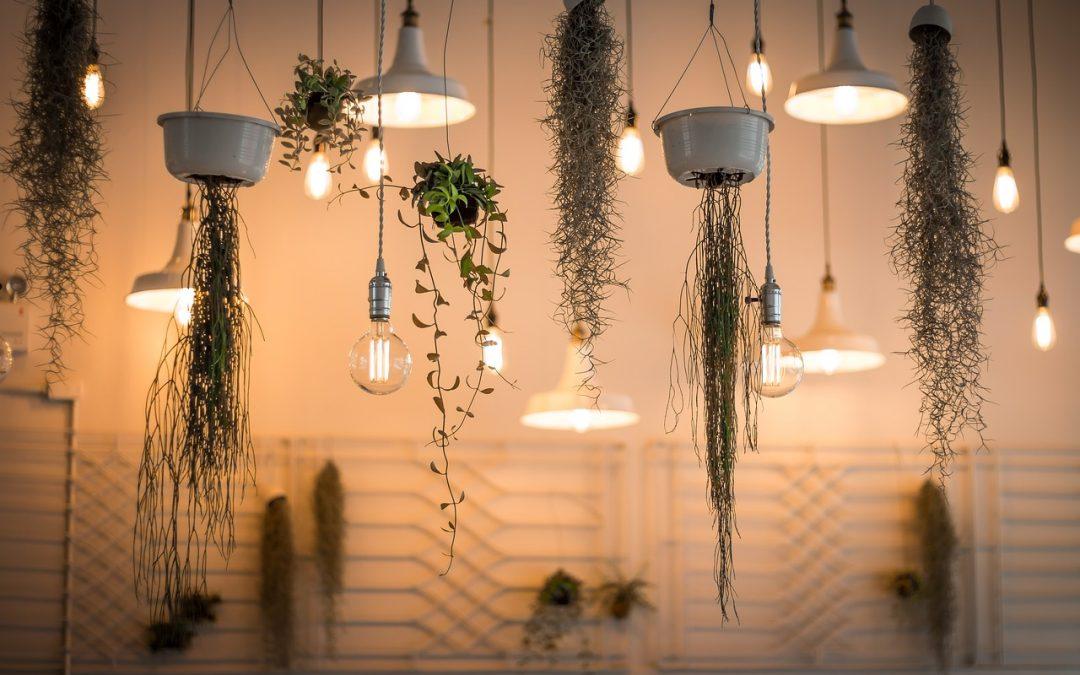 ¿Sabes qué bombillas te ayudan a ahorrar energía?