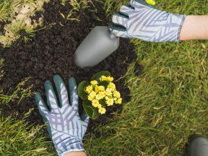 Servicio de jardinería.