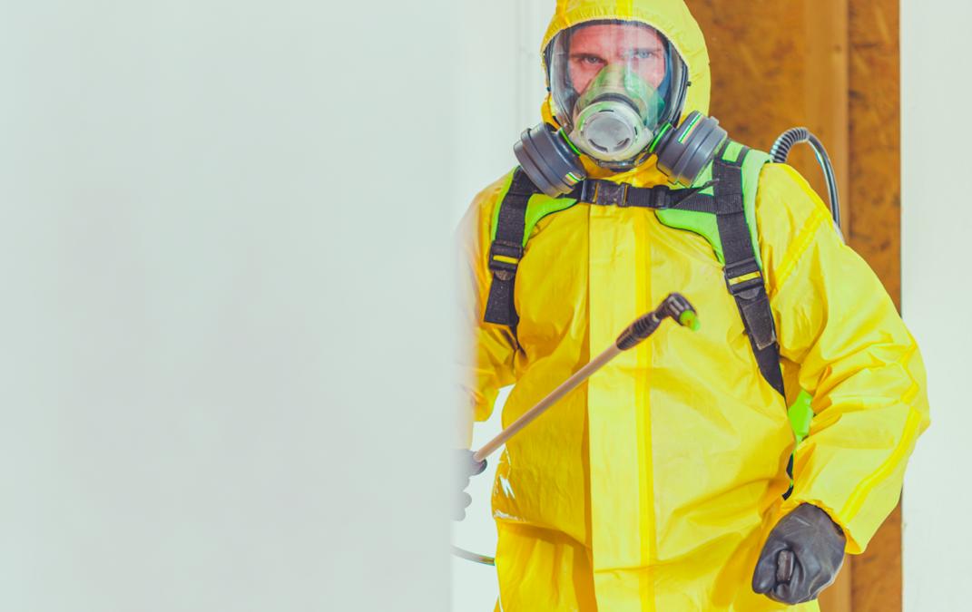 COVID-19 desinfección en empresas: te ayudamos a plantarle cara